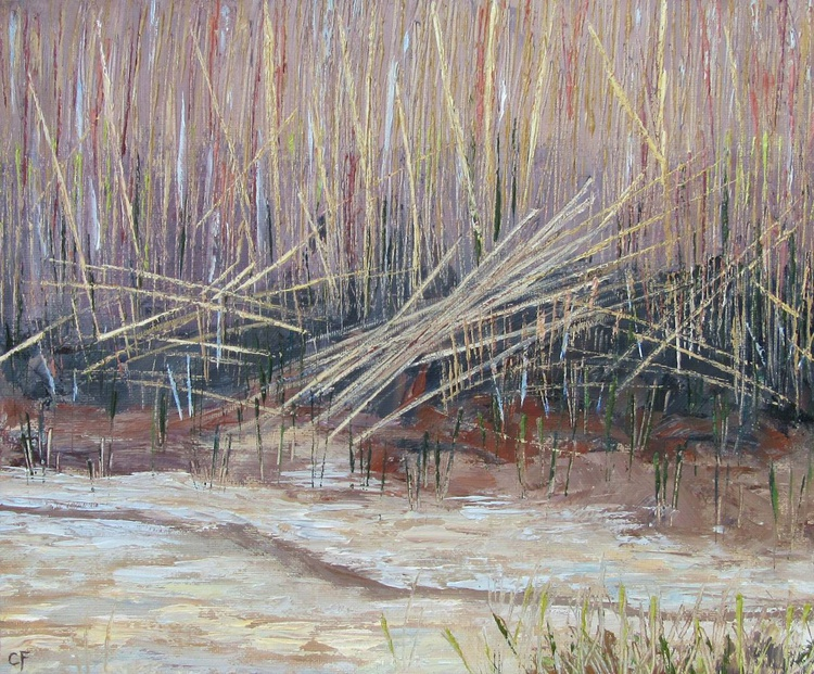 Reed Bed - Image 0