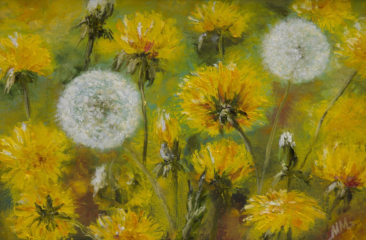 A Field Of Dandelions 2016 Oil Painting By Mila Moroko