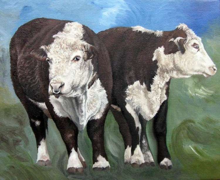 'Herefords' - Image 0