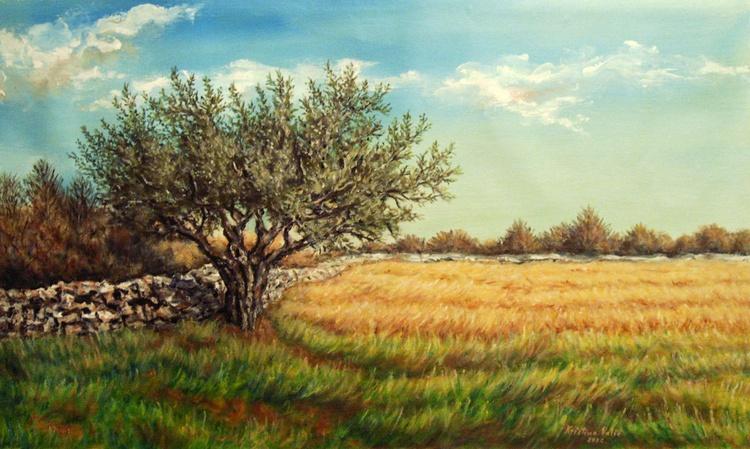 Olive tree - Image 0