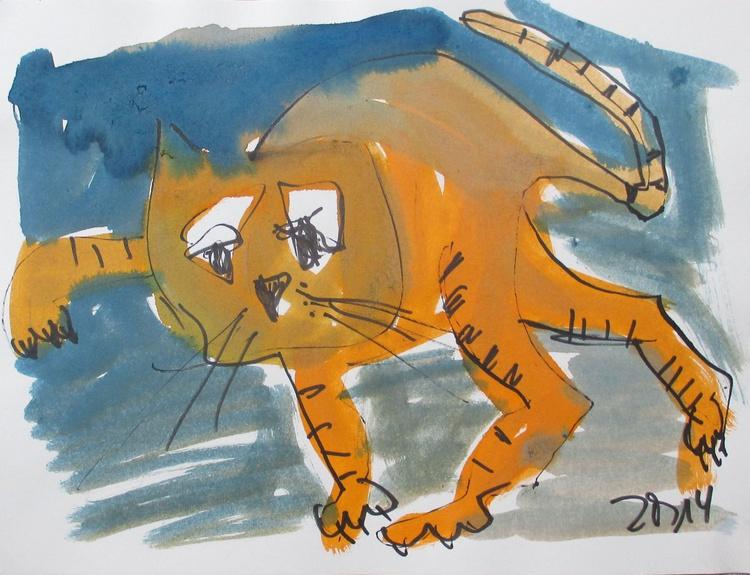 orange cat - Image 0