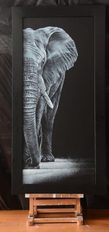 The Elephant Visitor - Image 0