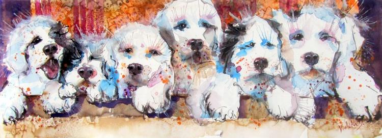 Puppies Galore! - Image 0
