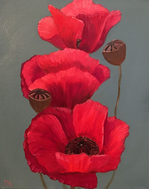 Poppies Look Lovely Today - Image 0