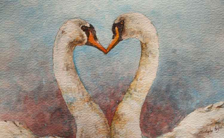 Swan Heart -