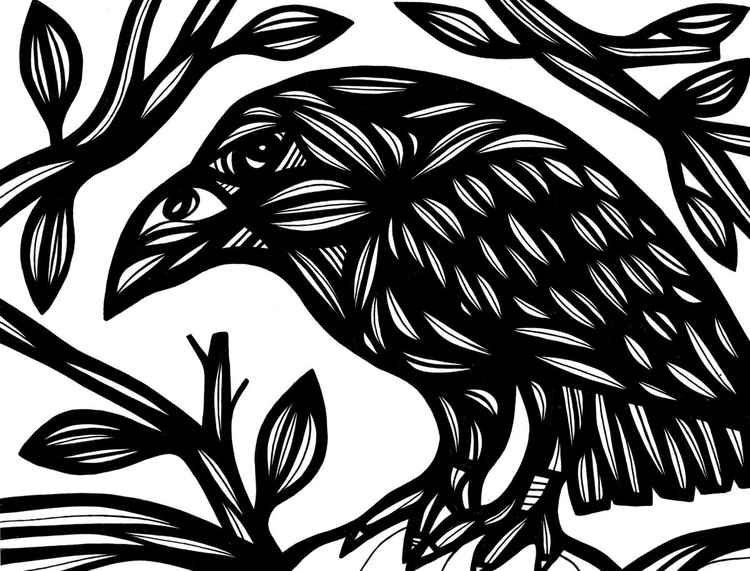 Magpie Mendacious Original Drawing -