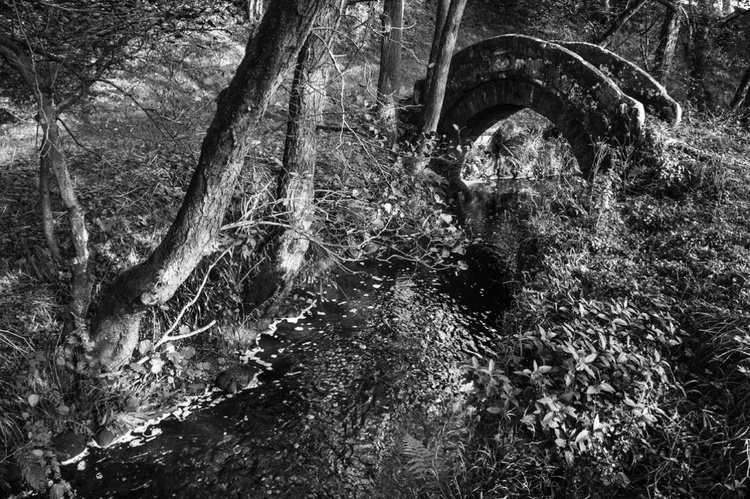 Fairy Dell (Ltd Edition of only 20 Fine Art Giclee Prints from an original photograph.) - Image 0