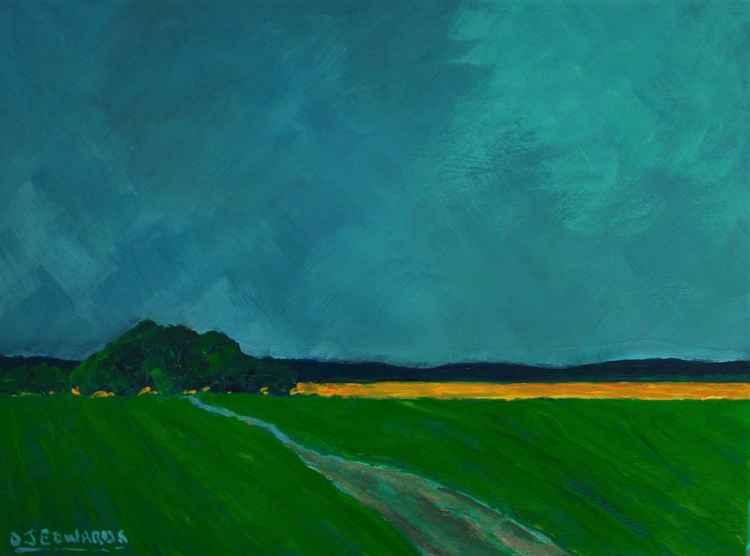 Incoming Rain, Canola Field