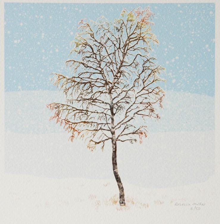 Winter Birch - Image 0