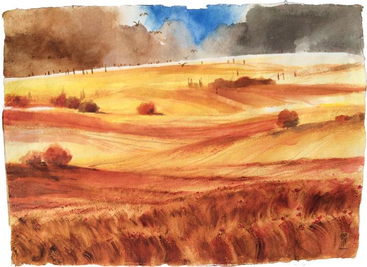 Colline di grano e papaveri - Image 0