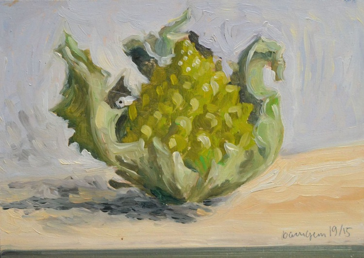 Big Green Roman Broccoli from Italy - Image 0