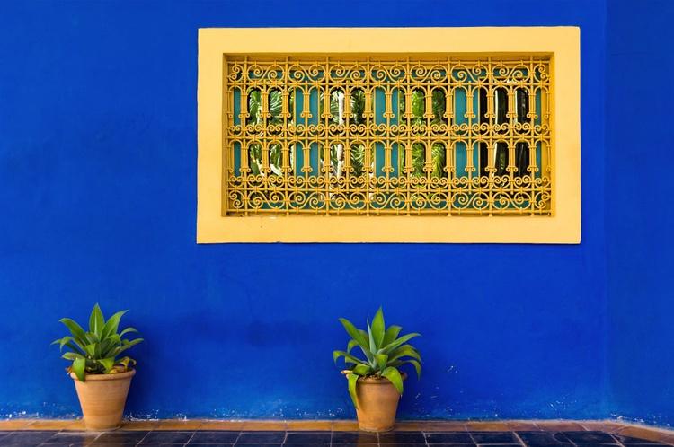 Jardin Majorelle, Marrakech. (59x42cm) - Image 0