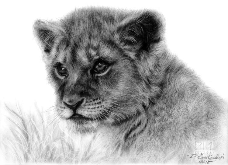 Lion Cub - Image 0