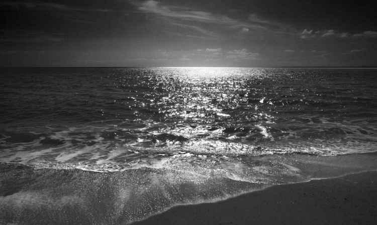 Silver Sea 4