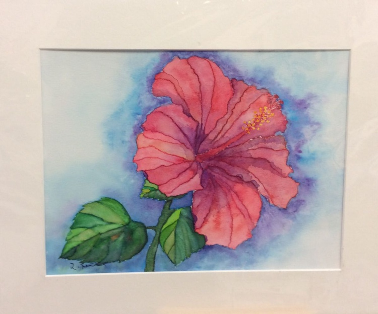 Pink hibiscus - Image 0