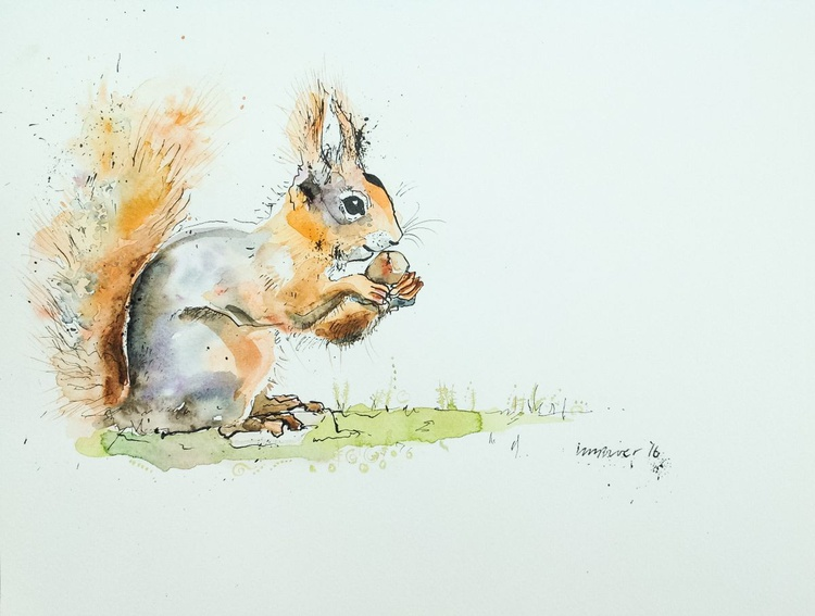 Red squirrel and hazlenut - Image 0