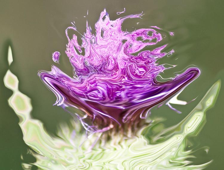 lilac shades - Image 0
