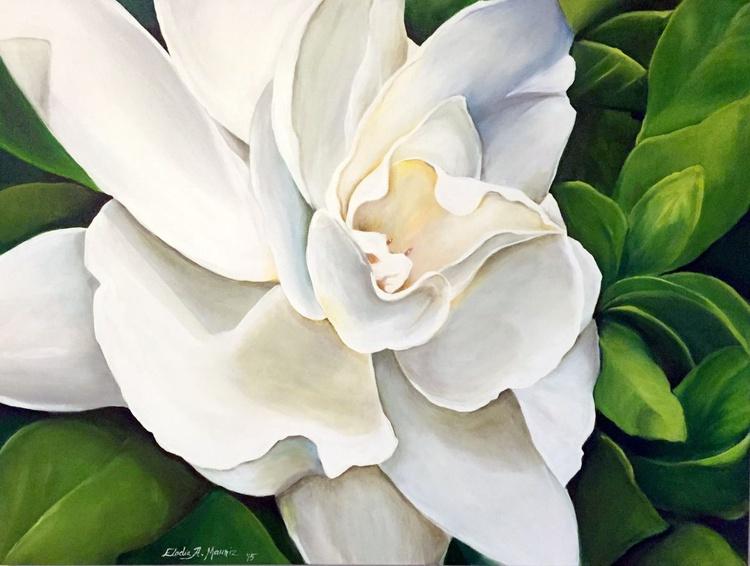 Gardenia - Image 0