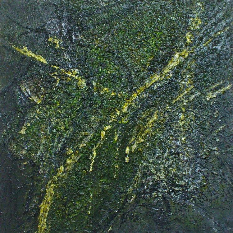 Mossy Lava Field #15017 (50x50cm) Textural Abstract Art - Image 0