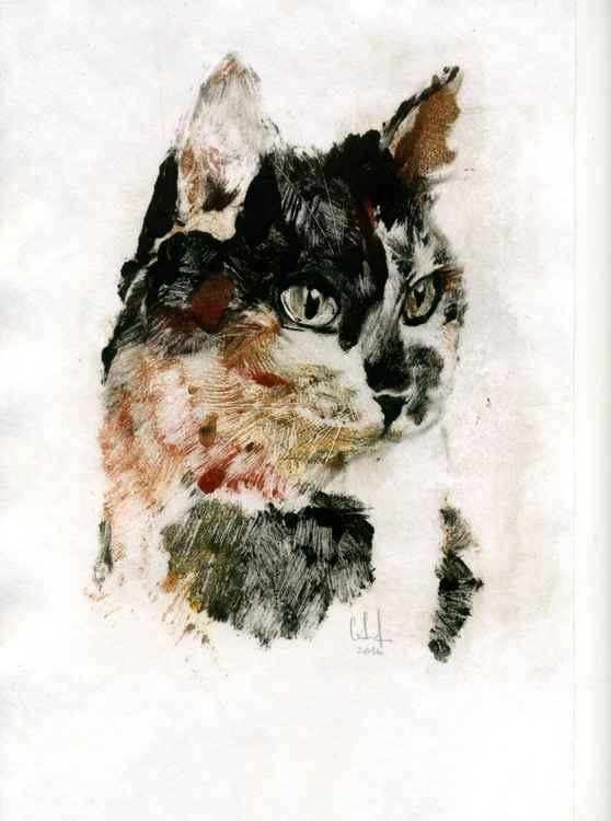 Cat_03 -