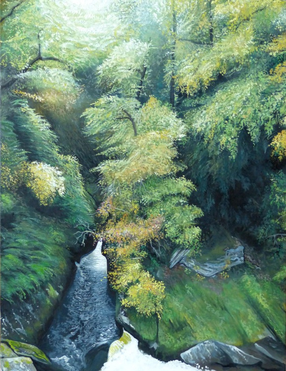 Sunlit Gully - SOLD - Image 0