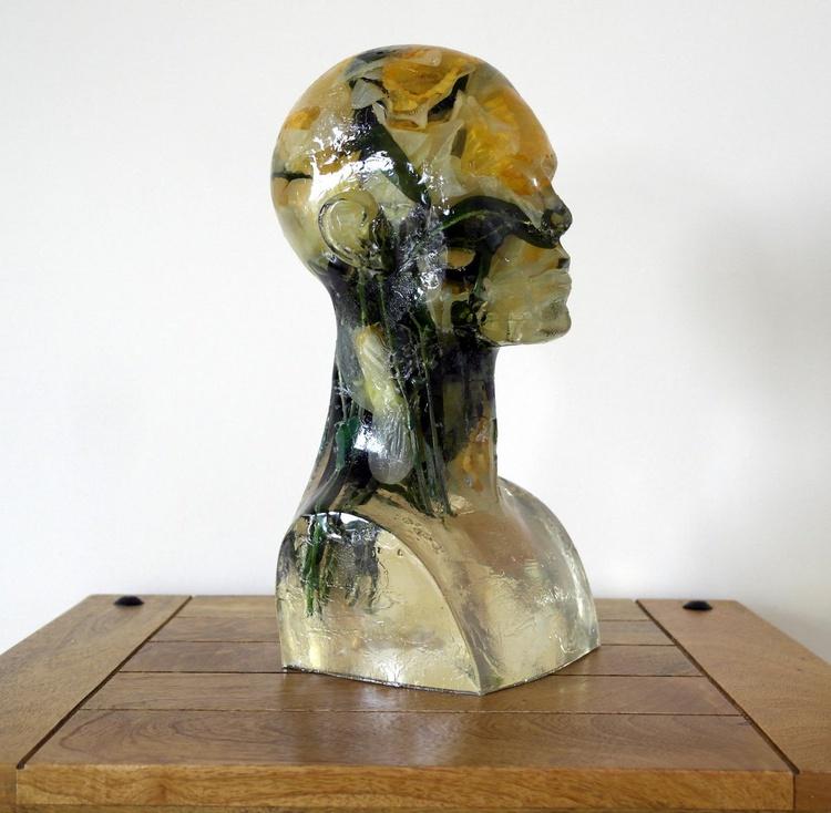 Daffodil Brain - Image 0