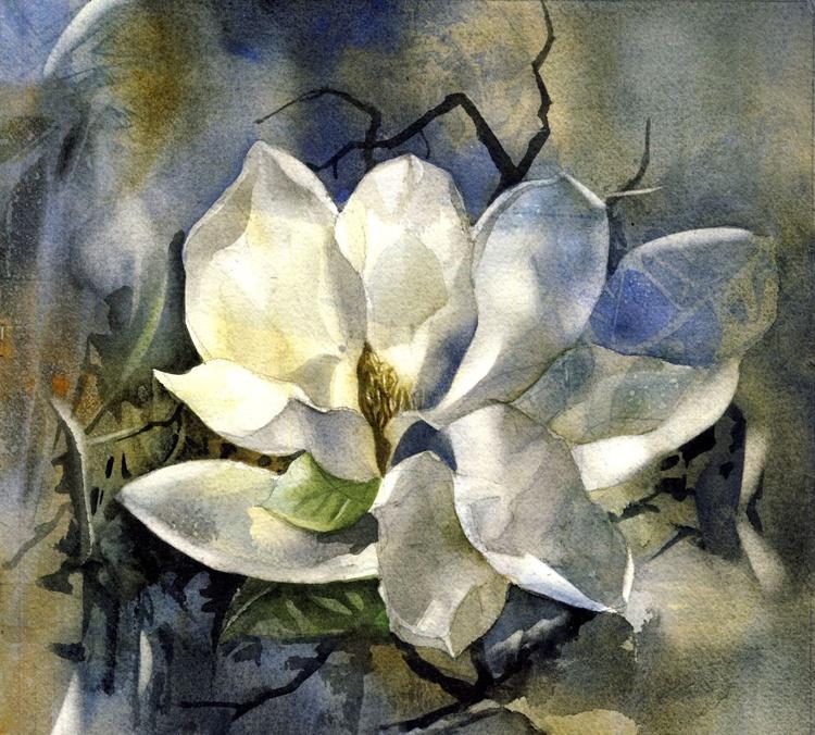 Evening magnolia - Image 0