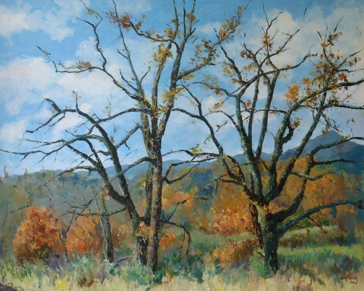 """""""Oak trees in late autumn"""" - Image 0"""