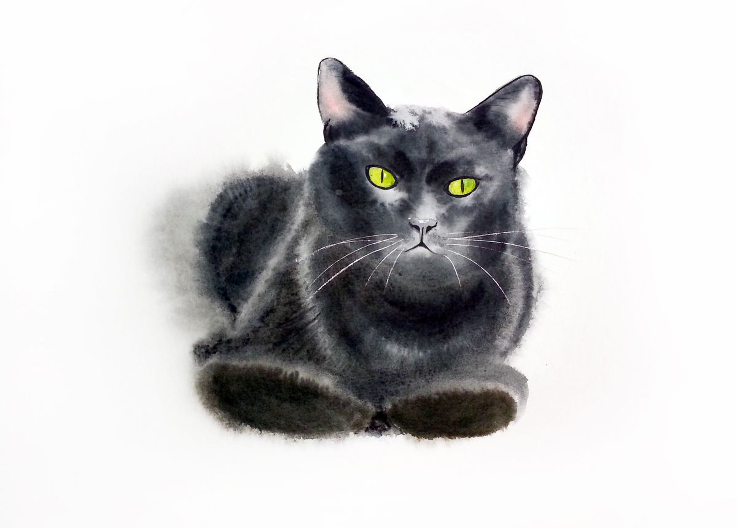 Black cat Original Watercolor Black Cat art