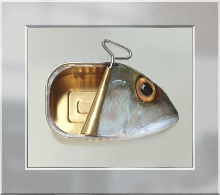 Fish Can on Aluminium - Image 0