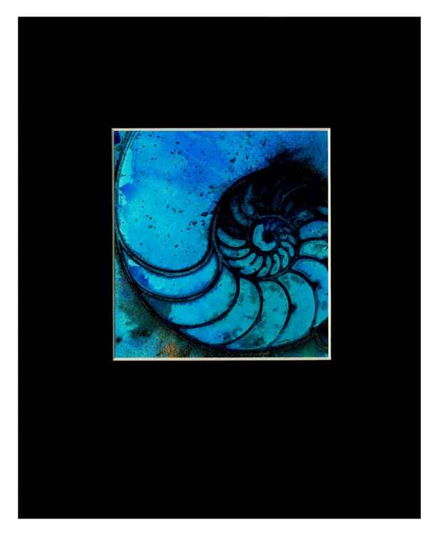 Sea Shell Watercolor Painting, Ocean, - Nautilus Shell No.987