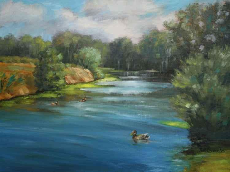 Ducks at Wilson Pond