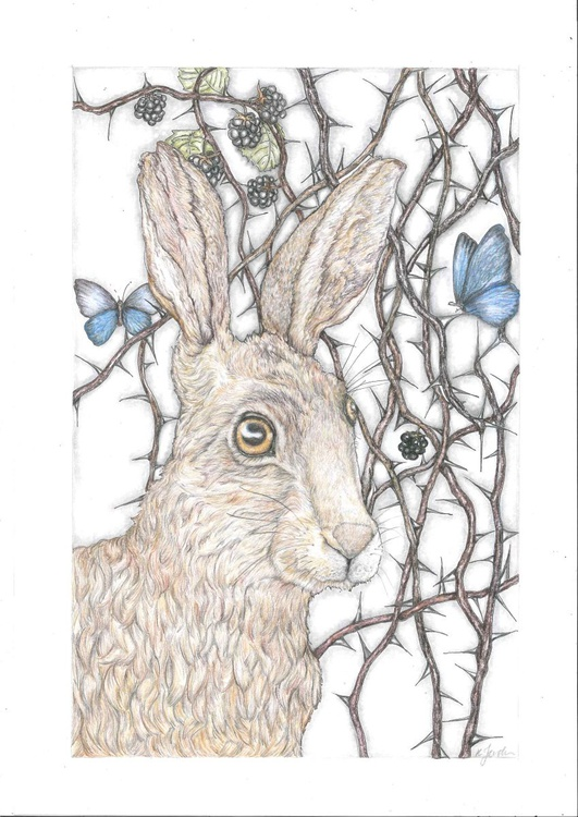 Bad Hare Day - Image 0