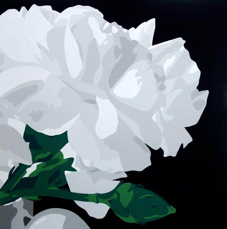White Carnations - Image 0
