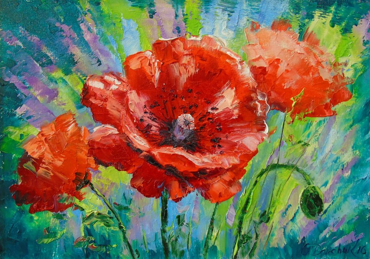 Blooming poppies - Image 0