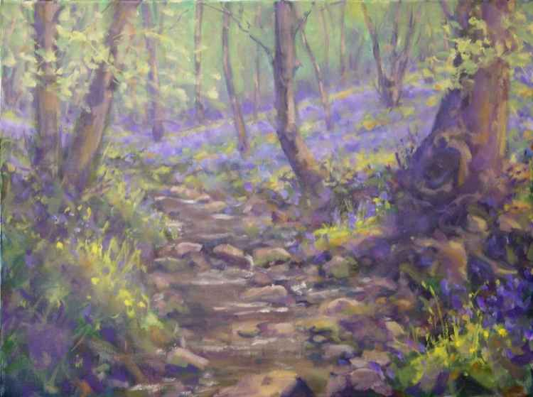 Bluebell Woods -