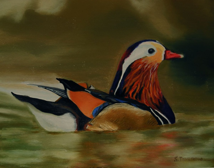 Colored Waterfowl - Image 0