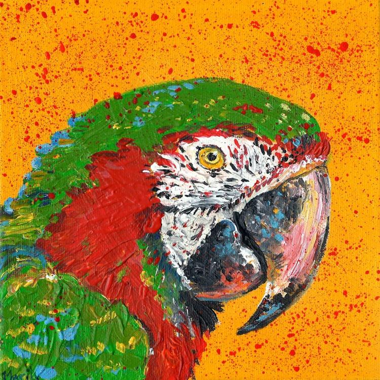 """'Macaw"" - Image 0"
