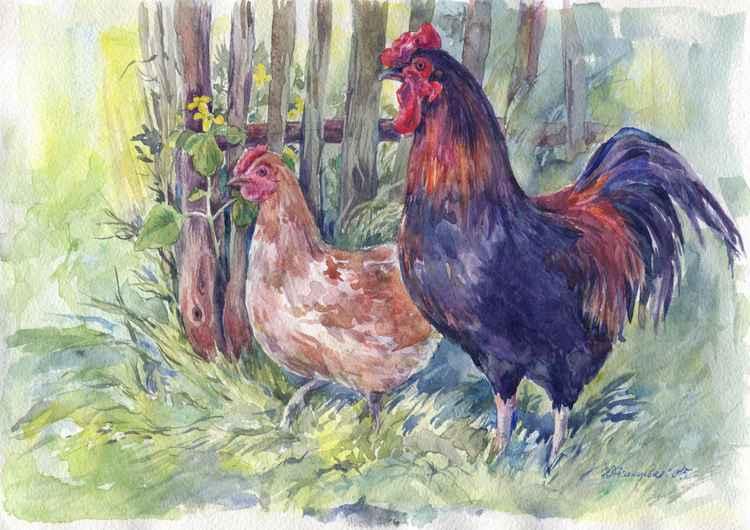 "Original watercolor ""Poultry yard"""