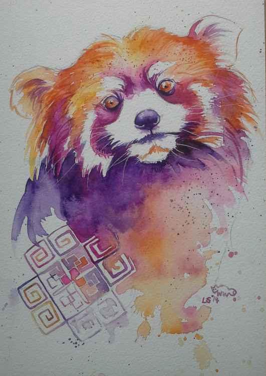 Red Panda -