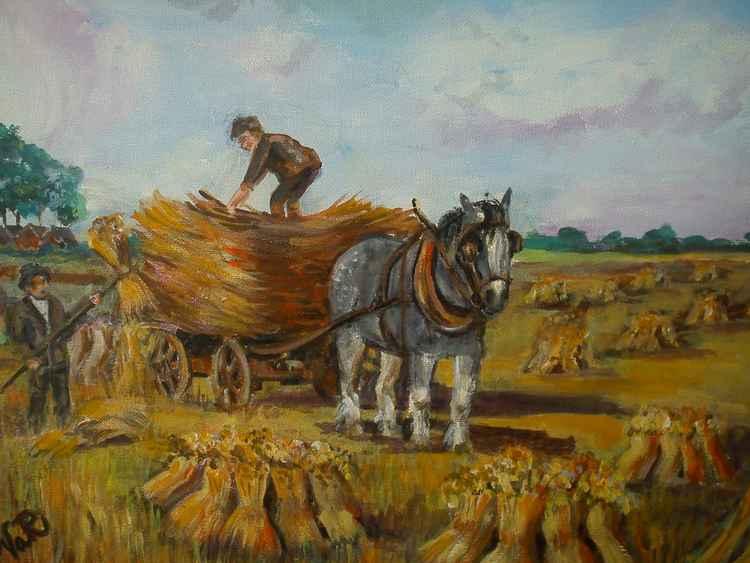 Harvest time. -