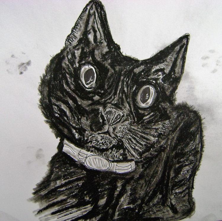 paw prints - Image 0