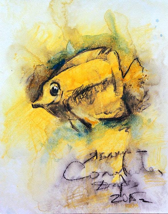 Yellow aquarium  fish - Image 0