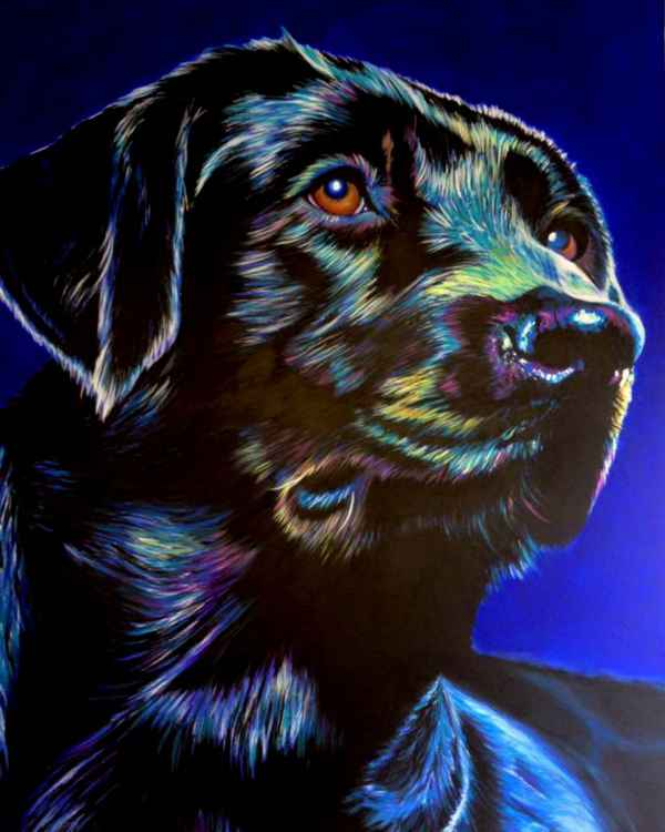 Original Painting of 'Wilf' by Kirstin Wood -