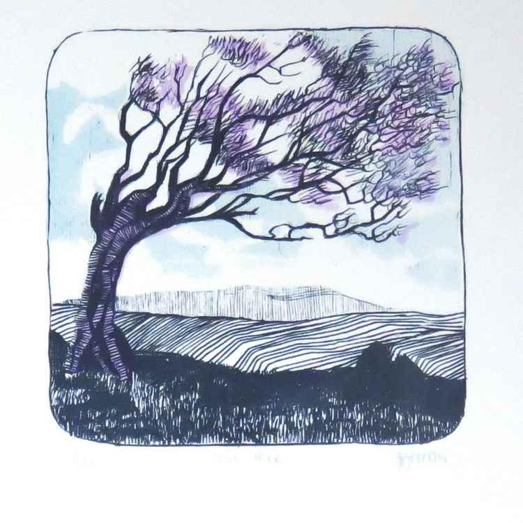 The Stoic Tree