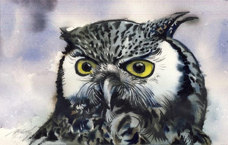 white face owl - Image 0