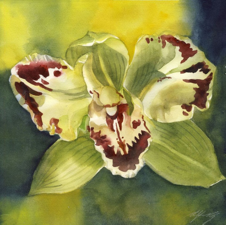 green cymbidum orchid with yellow - Image 0