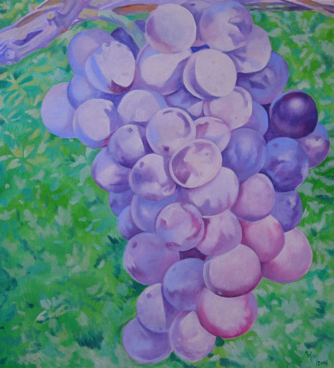 PURPLE GRAPES - Image 0