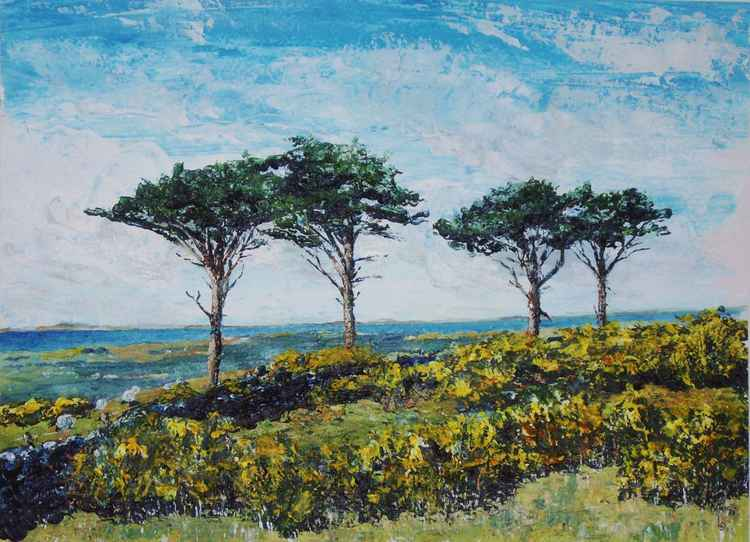 Pines, Sheep and Gorse, Sky Hill - Isle of Man -