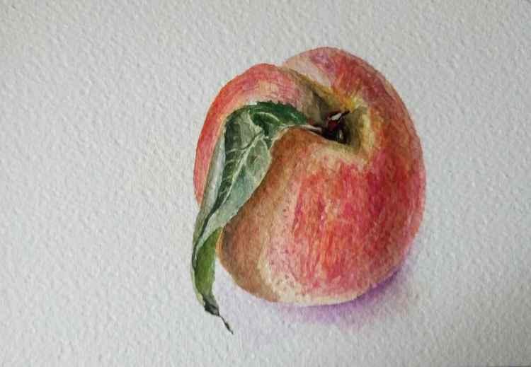 Peach. -